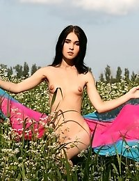 Stunning Teen Girl With Tiny Tits Posing Naked In The Summer Field Full Of Wild Flowers.