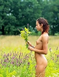 Naked Teen Cutie Gathering Flowers In The Field And Artfully Displaying Her Fresh Sexy Body.